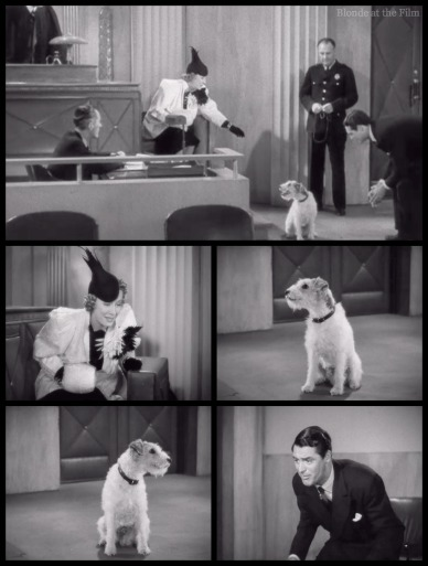 The Awful Truth Grant and Dunne dog trial