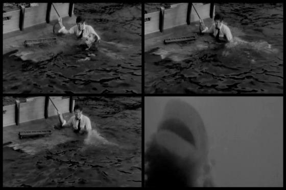Most Dangerous Game shark attack