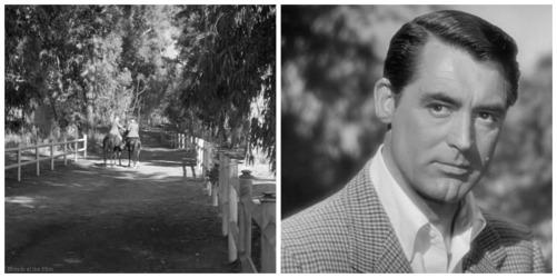 Notorious Cary Grant Ingrid Bergman horses
