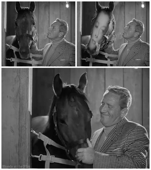 Pat and Mike Hepburn Tracy horse hallucination wm