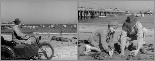 Primrose McCrea Rogers beach.jpg