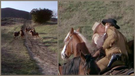 Calamity Jane Day Keel horse kiss.jpg