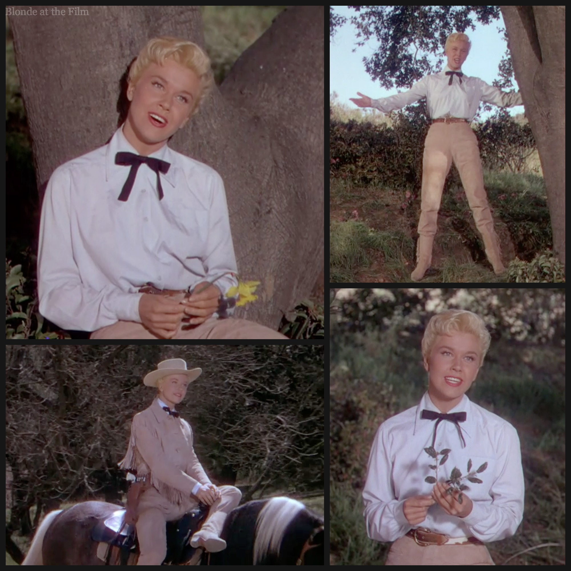 from Kohen doris day gay film