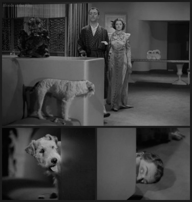 After Thin Man Loy Powell Asta chase 2