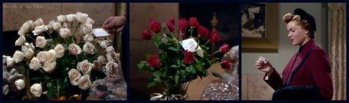 Duchess Idaho Williams roses