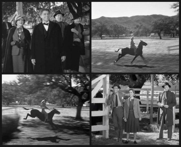 Dark Victory Reagan Davis Bogart Fitzgerald horse