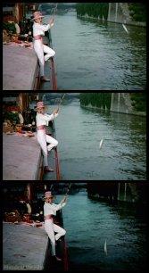 Funny Face Hepburn fish