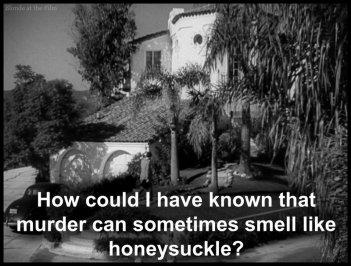 Double Indemnity honeysuckle