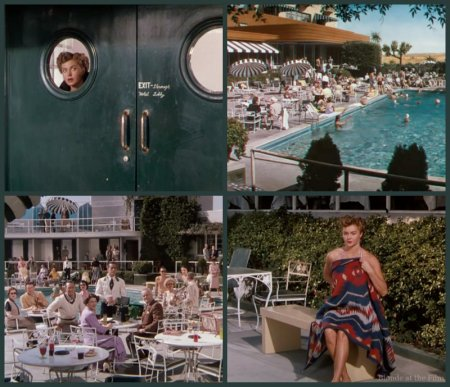 Texas Carnival Williams pool