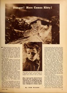 Hollywood Magazine April 1938, via: http://lantern.mediahist.org/catalog/hollywood27fawc_0235