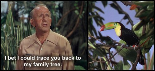 On An Island With You: Jimmy Durante