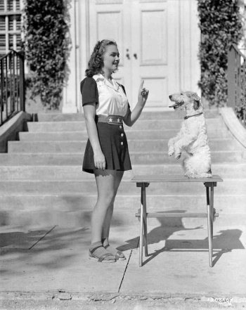 Shadow of the Thin Man: Donna Reed