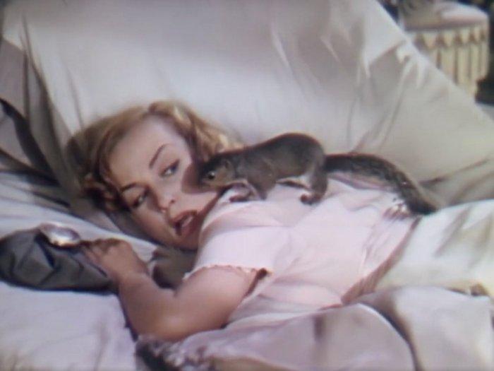 Nothing Sacred: Carole Lombard
